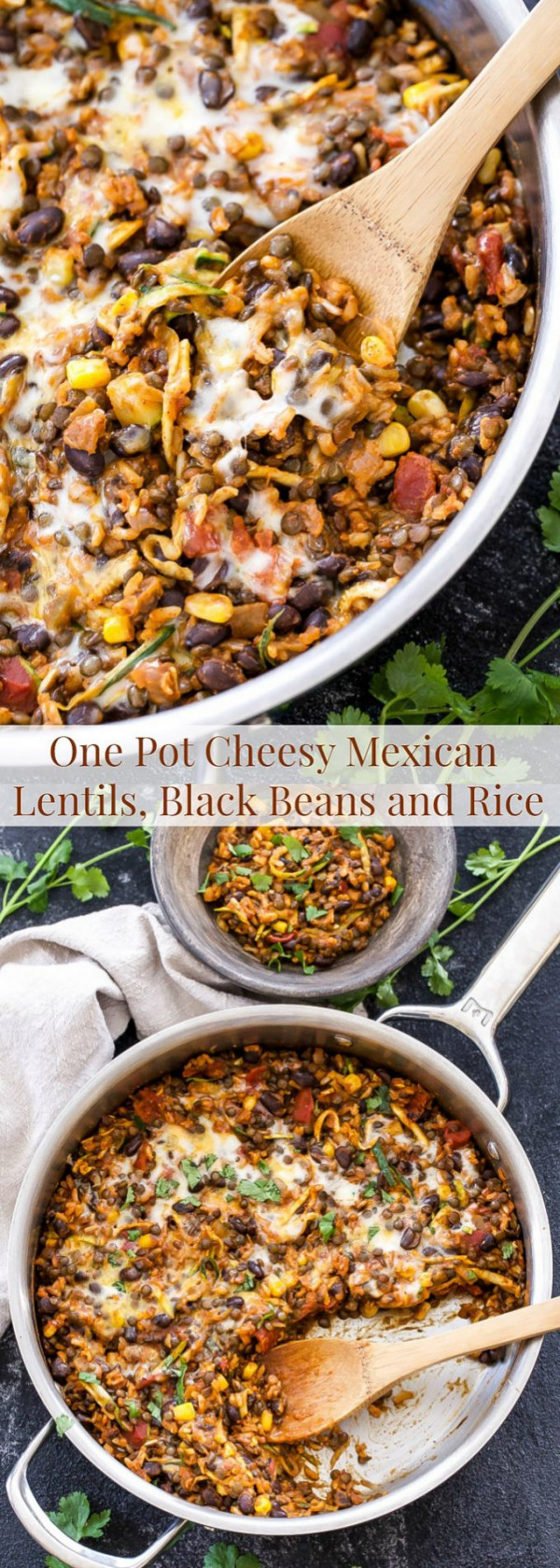 A healthy, vegetarian, gluten free dinner the whole family will love! You won't miss the meat in this easy to make, One Pot Cheesy Mexican Lentils, Black Beans and Rice!