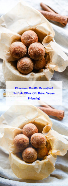 Cinnamon Vanilla Breakfast Protein Bites {No Bake, Vegan Friendly}