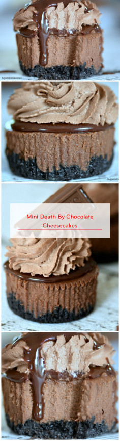 Mini Death By Chocolate Cheesecakes