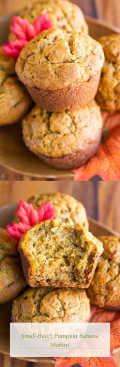 Small-Batch Pumpkin Banana Muffins