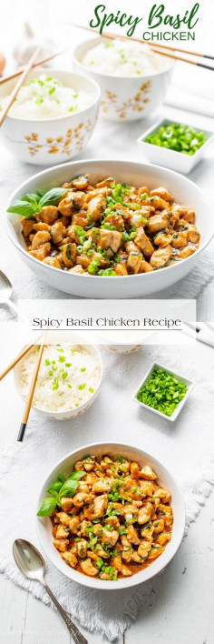 Spicy Basil Chicken Recipe
