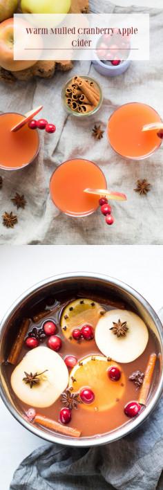 Warm Mulled Cranberry Apple Cider